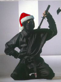 Secret Ninja Santa