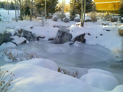 The pond in front of work